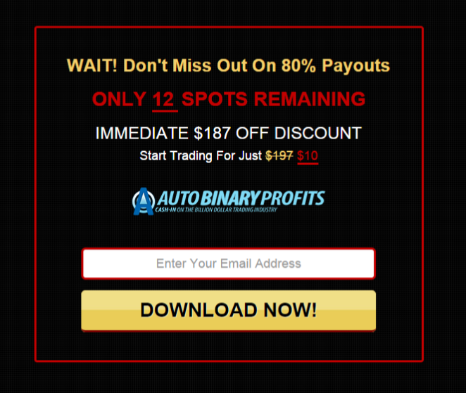 auto binary profits 2