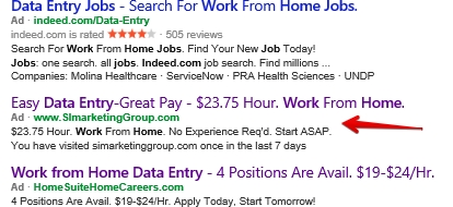 work from home data entry