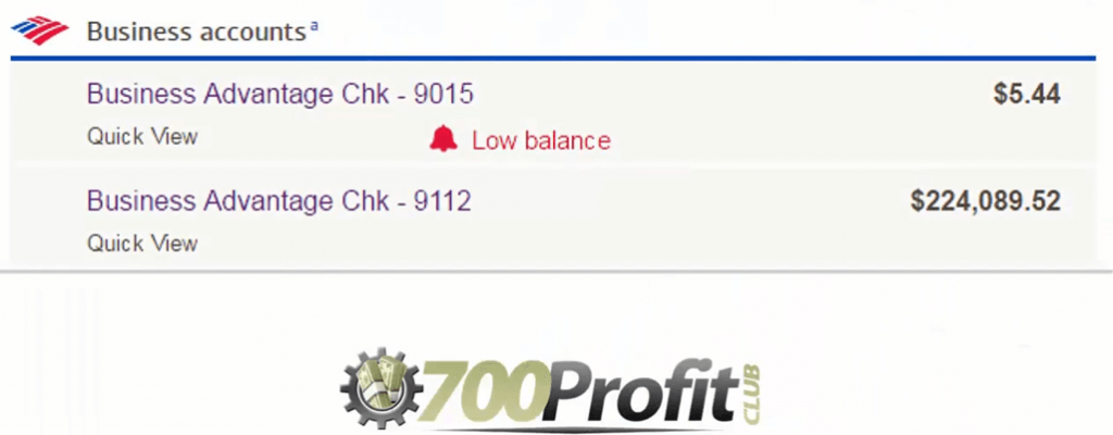 700 Profit Club proof earnings