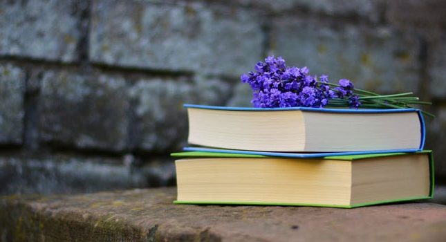 Get Paid to Read Books: How to Start a Career in Book Reviews